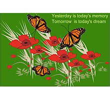 Poppies and butterflies (2891 Views) Photographic Print