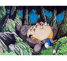 Nap Time with Totoro Photographic Print