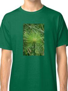 Papyrus plant Classic T-Shirt