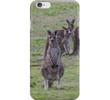 Group of Kangaroos Side road Eltham north Victoria Australia 20160618 7148 iPhone Case/Skin