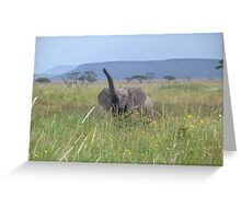 Happy baby elephant (small items only) Greeting Card