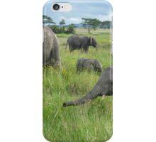 Elephants! iPhone Case/Skin