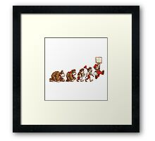 ~ DK To Mario Evolution ~ Framed Print