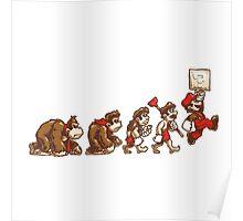 ~ DK To Mario Evolution ~ Poster