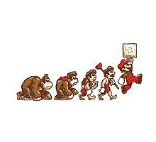 ~ DK To Mario Evolution ~ Photographic Print