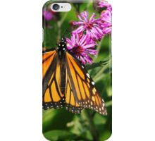 Monarch On Asters iPhone Case/Skin