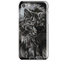 One Big Cat  iPhone Case/Skin