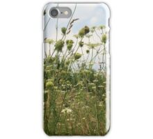 Wild flowers and afternoon walks iPhone Case/Skin