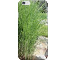 Possibly the best bush ever next to an outdoor reading lamp iPhone Case/Skin