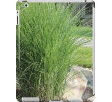 Possibly the best bush ever next to an outdoor reading lamp iPad Case/Skin