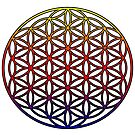 Flower of Life Sacred Geometry Symbol (yellow red purple gradient)  by Leah McNeir