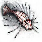 Swordfish by Kaitlin Beckett