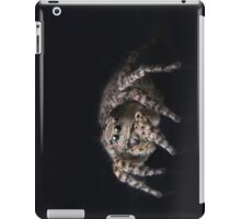 """Philosophy"" Adult Female Jumping Spider Asianellus festivus iPad Case/Skin"