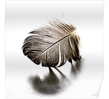 Feather Fracture Poster