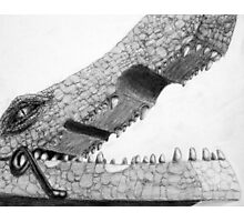 Clothespin Crocodile Photographic Print