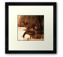 Wade on the water Framed Print
