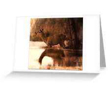 Wade on the water Greeting Card