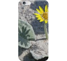 Sea Pumpkin - shadow self iPhone Case/Skin