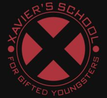 Xavier School for Gifted Youngsters  Kids Tee