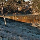 Old Railway Dam, Cullen Bullen NSW by Deborah McGrath