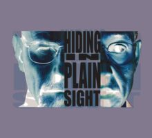 Hiding in Plain Sight - Breaking Bad by ptelling