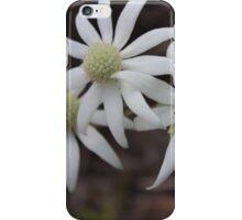 Flannel Flower  iPhone Case/Skin