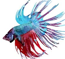 Betta Pillow - Blue and Red by DougPop