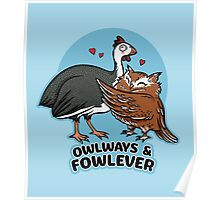Owlways & Fowlever Poster