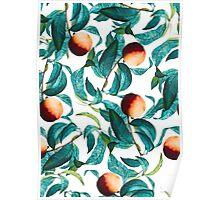 Fruit and Leaf Pattern Poster