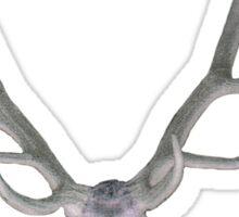 Deer Antler and Skull. Sticker