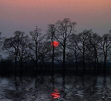 Silent Sun by Jo-PinX