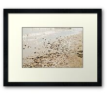 In a golden morning Framed Print