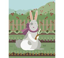 rabbit with a carrot Photographic Print