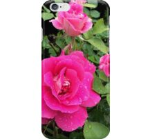 Pink Rose after the rain iPhone Case/Skin