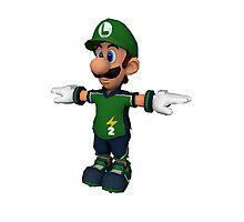 Luigi sprite Photographic Print