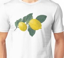 Oil painting of Two  Lemons and Leaves Unisex T-Shirt