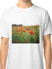 Poppy Field at Sunset Classic T-Shirt