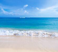 Gentle waves on the sandy beach in Hawaii by ellensmile