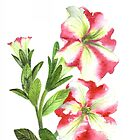 White and Pink Petunias by Farida Greenfield