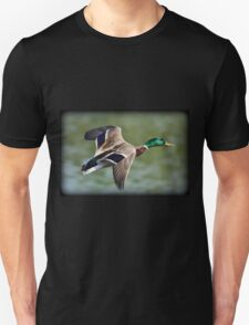 May Minsi Mallard Flight Unisex T-Shirt