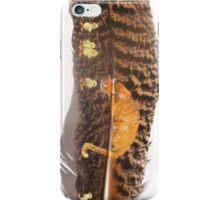 Orange Cat Watching iPhone Case/Skin