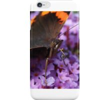 Beauty is knobbly knees and a long tongue iPhone Case/Skin