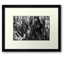 Green Cactus Fields In Summer Framed Print