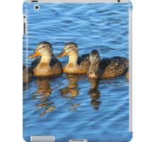 Black Ducks on a Pond iPad Case/Skin