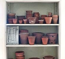 Flower Pots in all Sizes by Yampimon