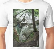 Head of the Falls Unisex T-Shirt