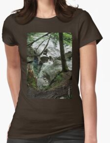The Head of the Falls Womens Fitted T-Shirt
