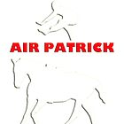 Air Patrick by Anthony Adams
