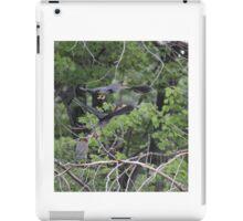 Green Herons in Flight iPad Case/Skin