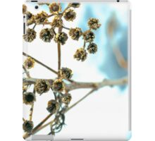 Arctic Brush iPad Case/Skin